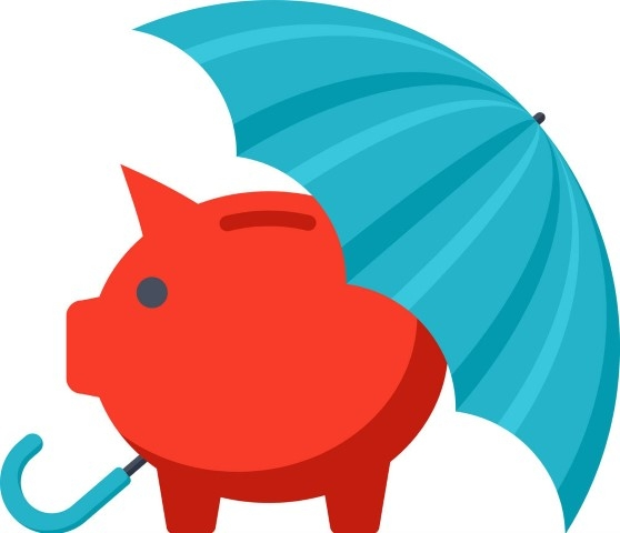 Pig under umbrella picture